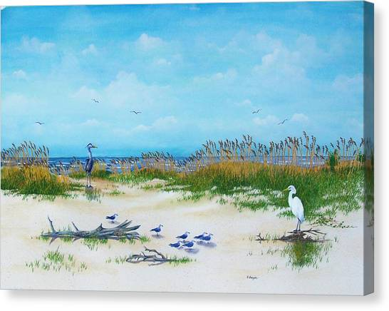 Dunes Denizens Canvas Print