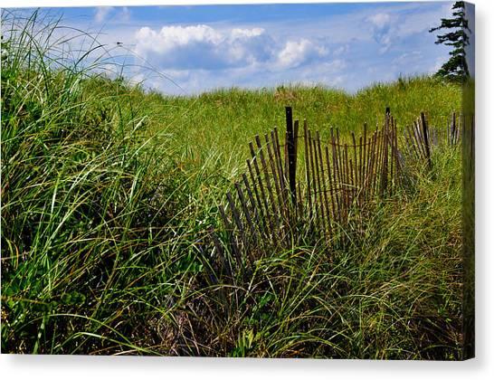 Dunes On Prince Edward Island Canvas Print
