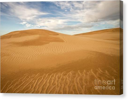 Dunescape Canvas Print