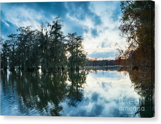 Atchafalaya Basin Canvas Print - Dusk In Lake Martin by Ellie Teramoto