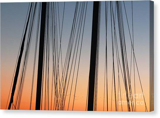 Dusky Ropes Canvas Print