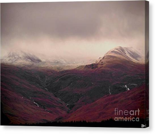 Dusting Canvas Print