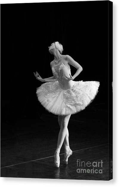 Dying Swan 3. Canvas Print