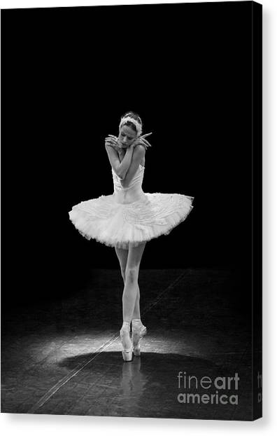 Dying Swan 5. Canvas Print