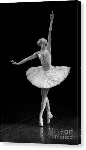 Dying Swan 9. Canvas Print