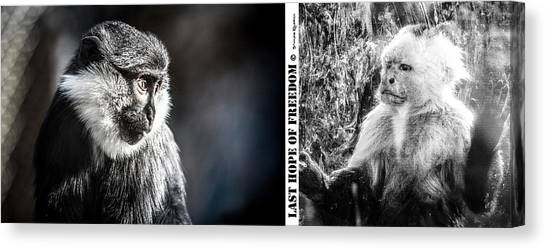 Canvas Print featuring the photograph diptych Last hope of Freedom  by Stwayne Keubrick