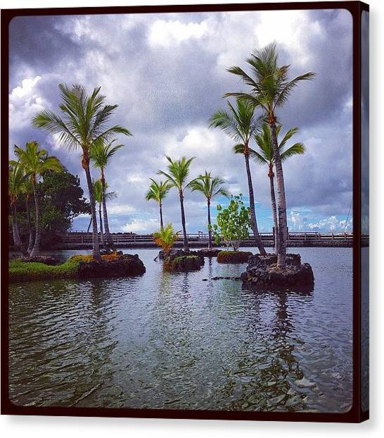 Lava Canvas Print - Palm Tree Islands by Eugene Evon