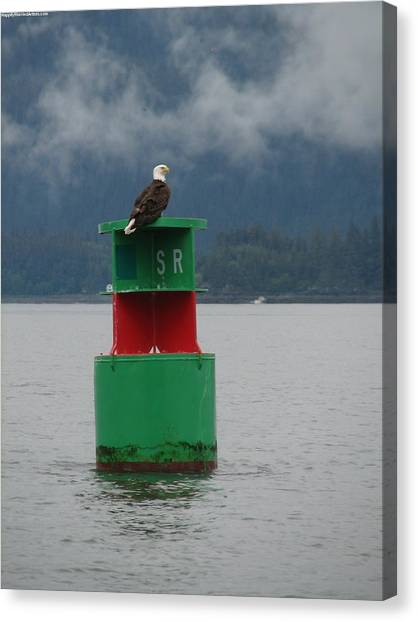 Eagle On Bouy Canvas Print