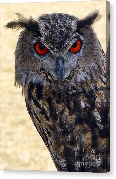 Eagle Owl Canvas Print