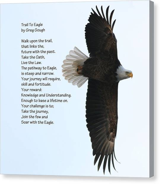 Eagle Scout Canvas Print - Eagle Scout By Ami Shecter by Paulinskill River Photography