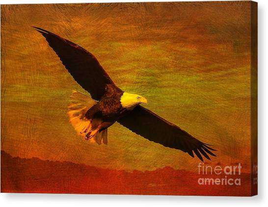 Eagle In Flight Canvas Print - Eagle Spirit by Deborah Benoit