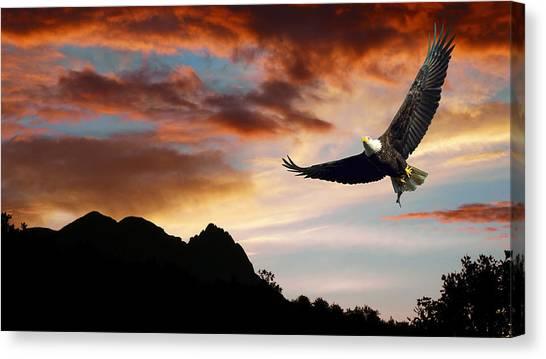 Eagle In Flight Canvas Print - Eagle Sunset by Daniel Hagerman
