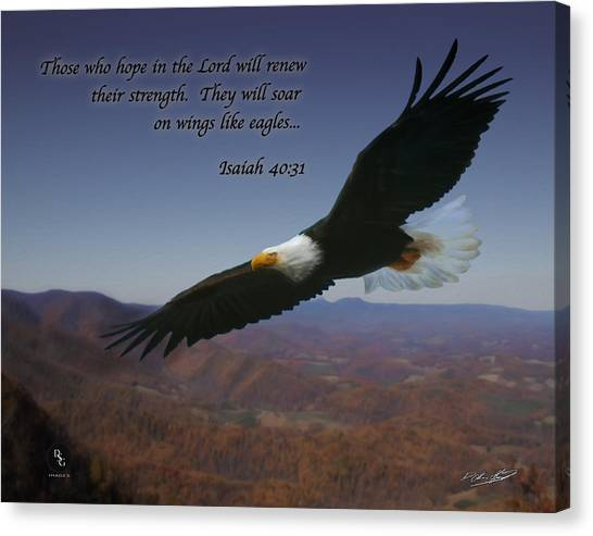 Eagles Wings Canvas Print