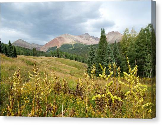 Early Autumn In The San Juans -  Mount Wilson And Wilson Peak Canvas Print