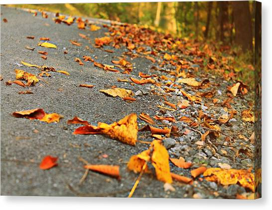 Canvas Print featuring the photograph Early Autumn Road by Candice Trimble
