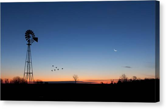 Sunrise Canvas Print - Early Birds by Bill Wakeley