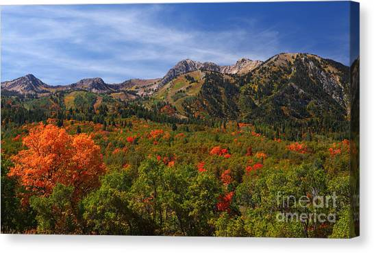 Early Fall Color Canvas Print