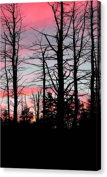 Early Fall Sky Vi Canvas Print by Brian Lucia