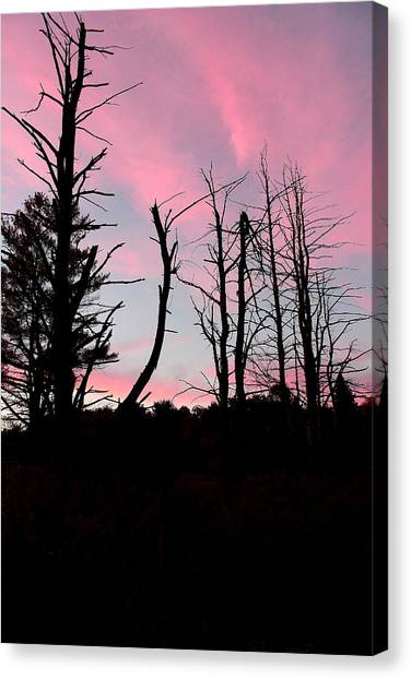 Early Fall Sky Vii Canvas Print by Brian Lucia