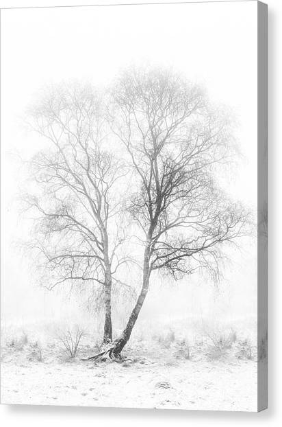 Early In The Morning Canvas Print by Greetje Van Son