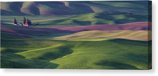 Contour Canvas Print - Early Light In The Palouse by Latah Trail Foundation