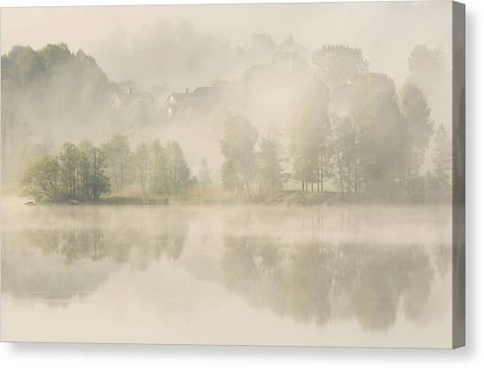 Foggy Forests Canvas Print - Early Morning. by Allan Wallberg
