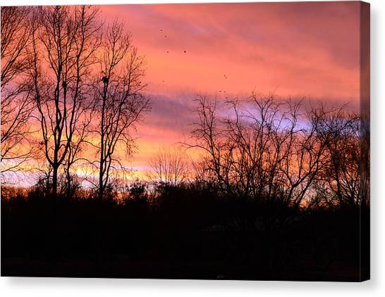 Early Morning Color Canvass Canvas Print