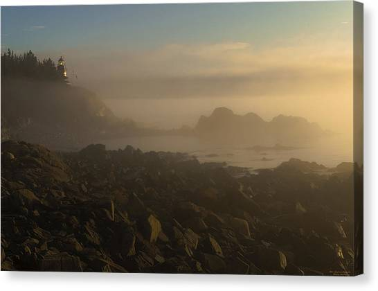 Early Morning Fog At Quoddy Canvas Print