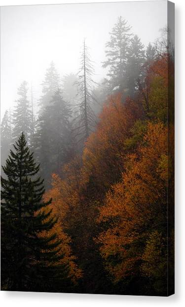 Early Morning Fog Smoky Mountains Canvas Print by John Saunders