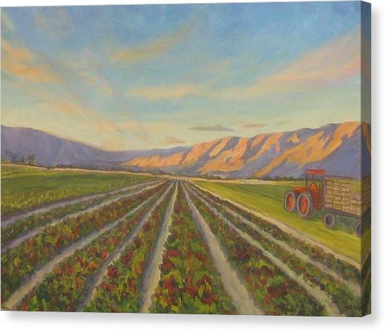 Tractors Canvas Print - Early Morning Harvest by Maria Hunt