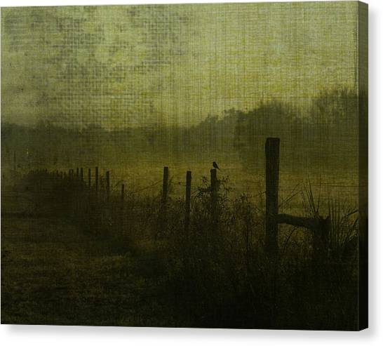 Early Morning Canvas Print