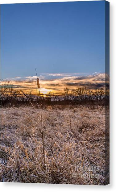 Prairie Sunrises Canvas Print - Early Riser by Andrew Slater