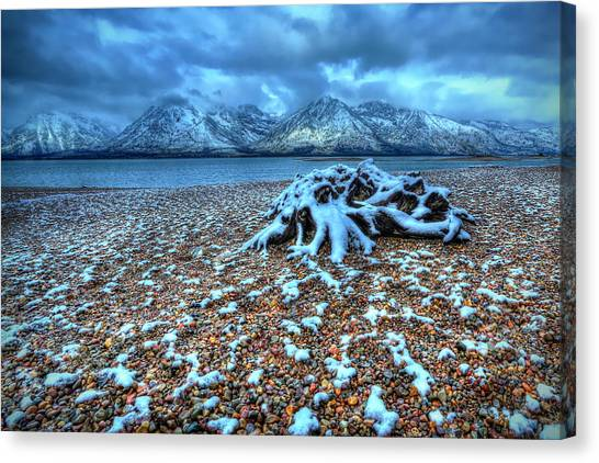 Early Snow On The Tetons Canvas Print