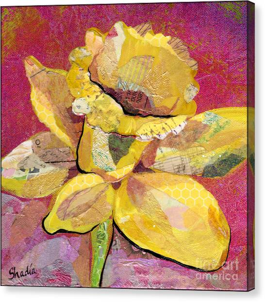 Orchid Canvas Print - Early Spring IIi  Daffodil Series by Shadia Derbyshire