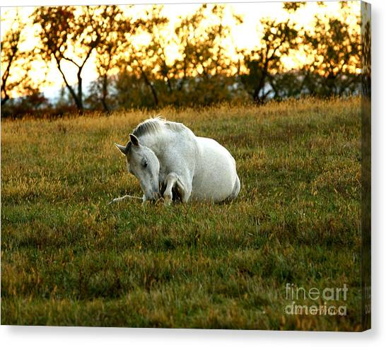 Easier Lying Down Canvas Print