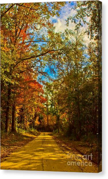 East Texas Back Roads Hdr Canvas Print