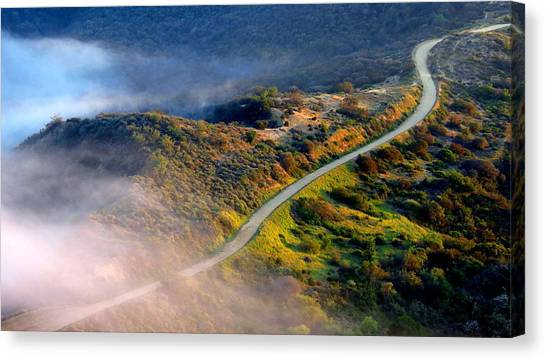 East Topanga Fire Road Canvas Print by Catherine Natalia  Roche