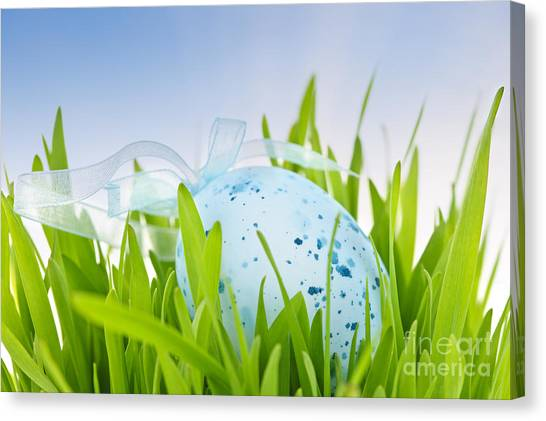 Easter Eggs Canvas Print - Easter Egg In Grass by Elena Elisseeva