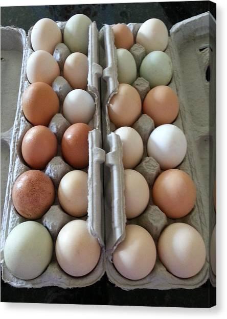 Easter Eggs Au Naturel Canvas Print