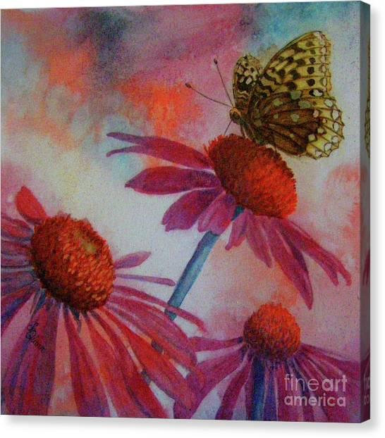 Echinacea Fritillaria Canvas Print