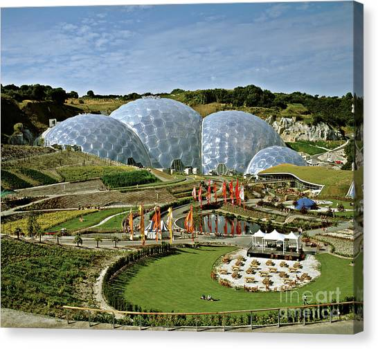 Eden Project 2002 Canvas Print by David Davies