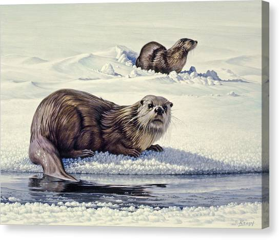 Otters Canvas Print - Edge Of The Lake by Paul Krapf