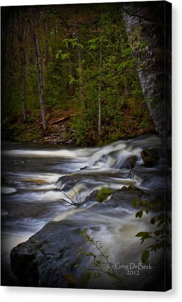 Edge Of The Stream Canvas Print