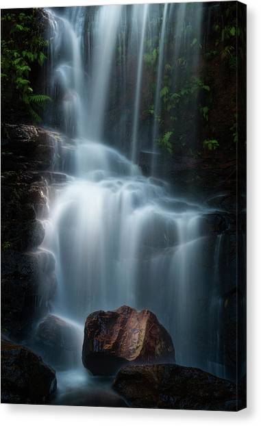 Flowing Canvas Print - Edith Falls by Yan Zhang