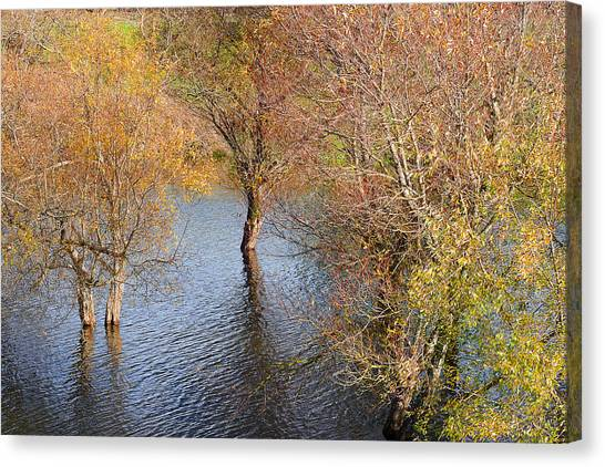 Eel River Deux Canvas Print