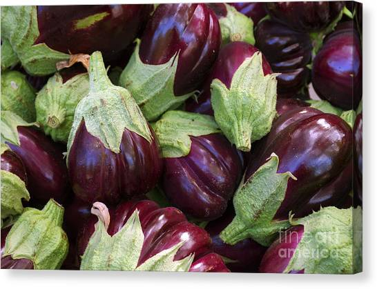 Grocery Store Canvas Print - Eggplants by Carlos Caetano