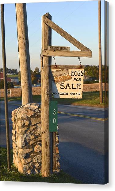 Eggs For Sale Canvas Print