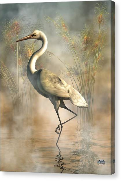 Florida Wildlife Canvas Print - Egret by Daniel Eskridge