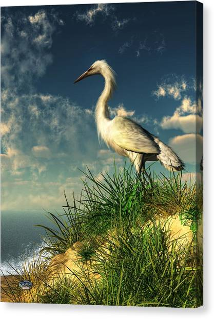 Egret In The Dunes Canvas Print