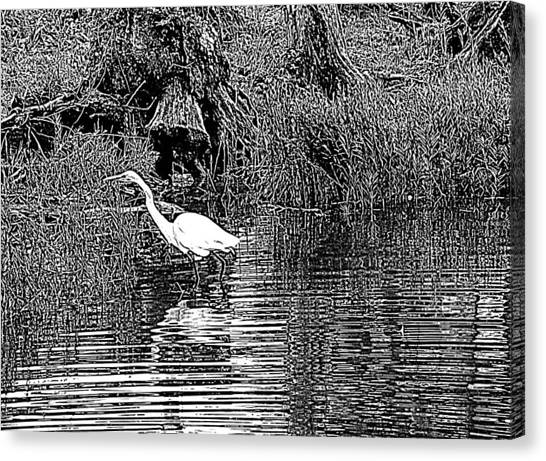 Egret On The Move Canvas Print